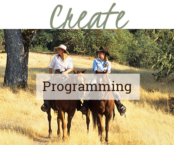 Creating Programming featured photo link